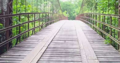 wooden-bridge_perphella_2000x500