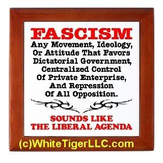 Fascism Liberal Agenda