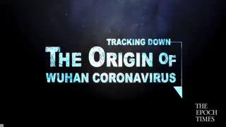 The Origins of the Wuhan Coronavirus